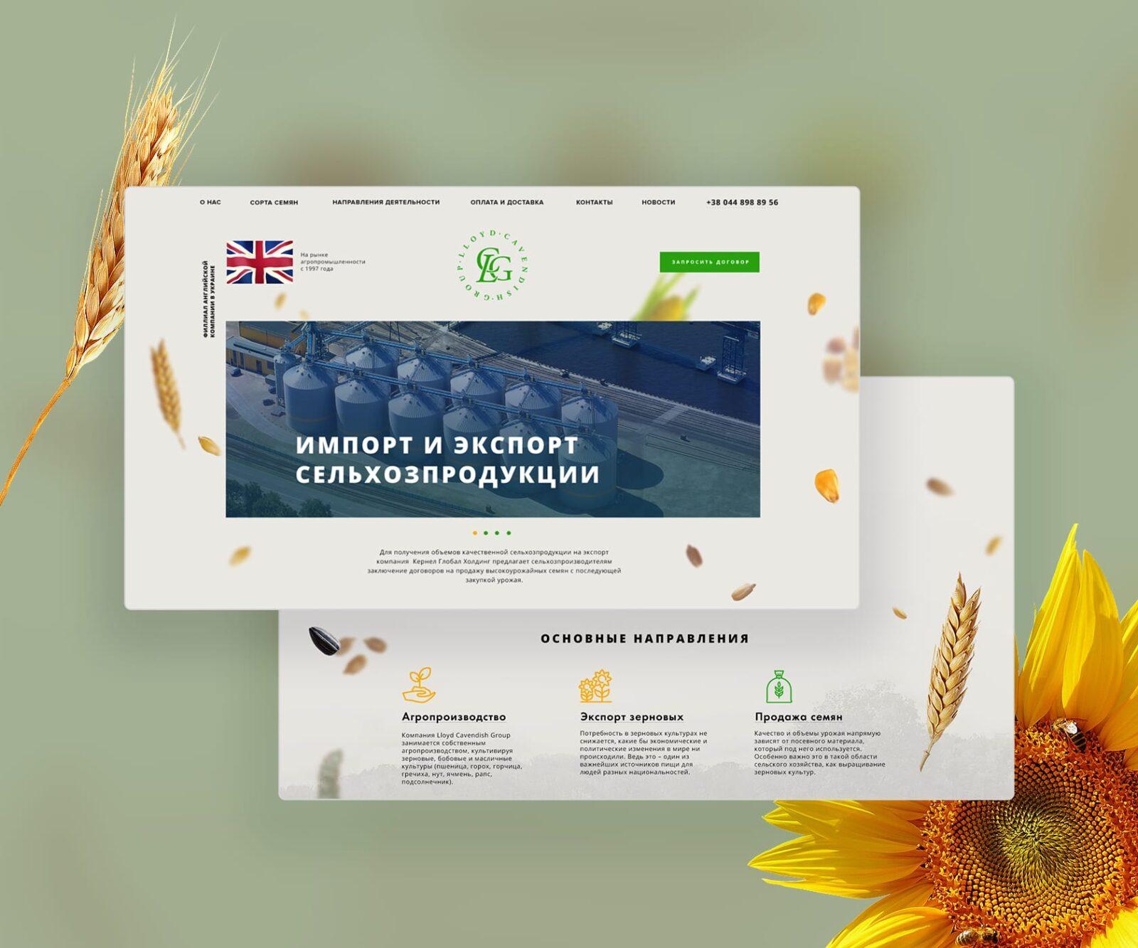 дизайн сайта канадская семечка